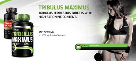 TRIBULUS Maximus 90 tabliet - Fit-Life.sk - Športová výživa pre náročných