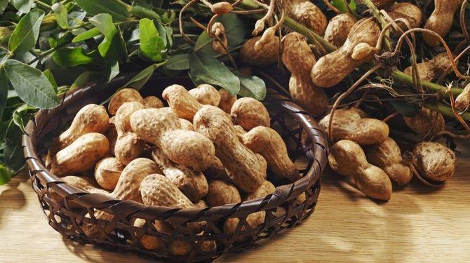 GymBeam 100% Arašidové maslo 340 g Fit Life športová výživy, doplnky výživy a arašidové maslá
